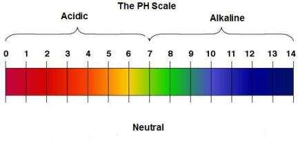 acid and pH chart to help you understand your baby's infant acid reflux
